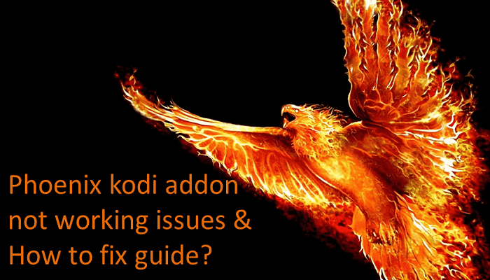 How to Fix Phoenix Kodi Not Working Issues