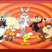 How to install Watch Cartoon Online on Kodi