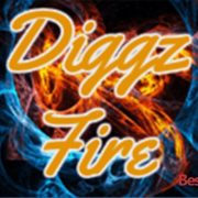 How to Install Diggz Fire Builds on Kodi 17 krypton