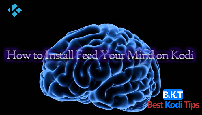 How to Install Feed Your Mind on Kodi