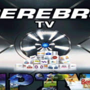 How to Install Cerebro IPTV on Kodi