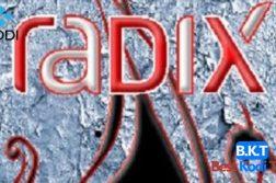 How to Install Radix on Kodi