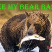 How to install See My Bear Bass Addon On Kodi