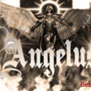 How to Install Angelus on Kodi