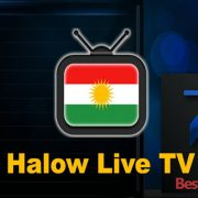 How to Install Halow Live TV on Kodi
