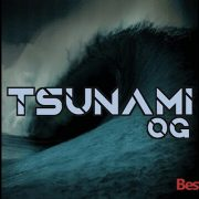 How to Install Tsunami OG on Kodi