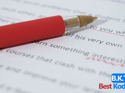 Overview of Essay Writing Services