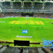Watch IPL Online with CricFree TV - Best Online Platform for IPL 2020