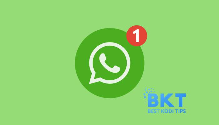 WhatsApp Web App is Going to Update with Video And Voice Call Buttons