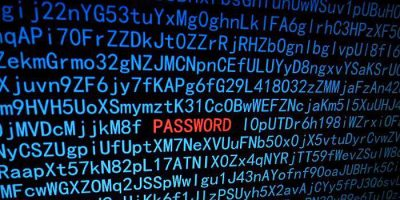 Password Security & Protection