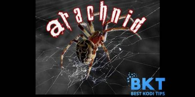 How to Install Arachnid Addon on Kodi 18 Leia